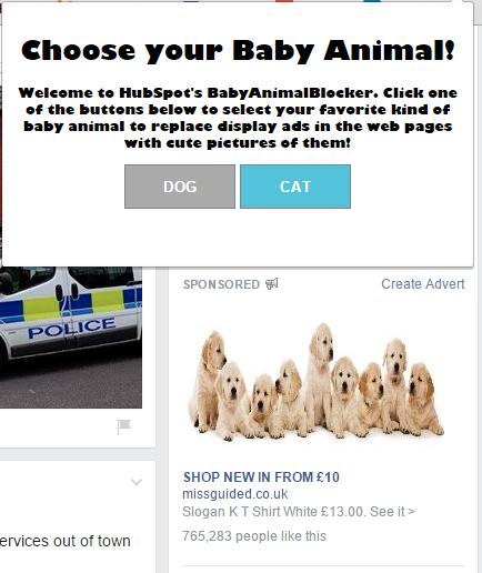 thrive-facebook-animal1