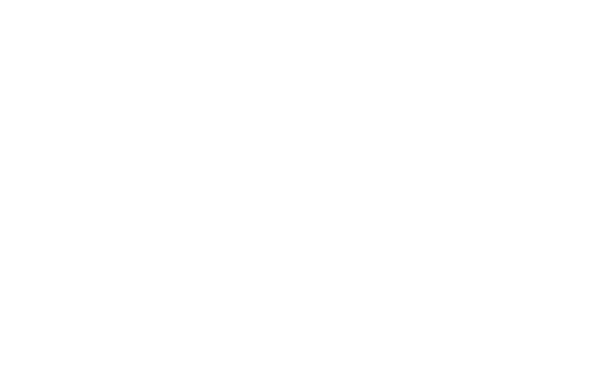 nebsf-logo-white